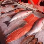 Salmon price