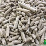 sugarcane-bagasse-pellets-MLT-1